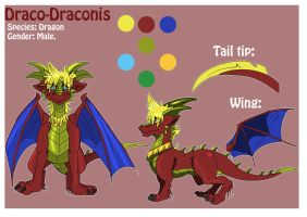 New Character Sheet by Lord-DracoDraconis