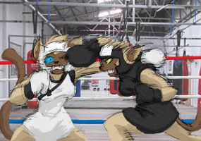 Request: Yin vs Yang Sparring by Inspectornills