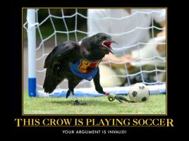 crows and soccer by Ink-tail