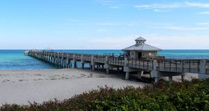 Jupiter Pier by flowerhippie22