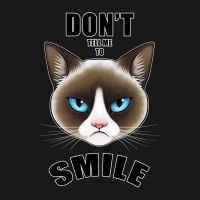 Don't Tell Me to Smile - Grumpy Cat Version by LaurenMagpie