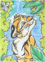 ACEO Trade - AWOS by Nakouwolf
