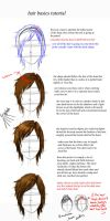 hair basics by endofnonentity