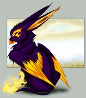 ..Fire.. by etuix