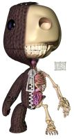 Sackboy Anatomy Half by freeny