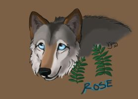 Rose: Beta Wolf by VeronicaRosejones
