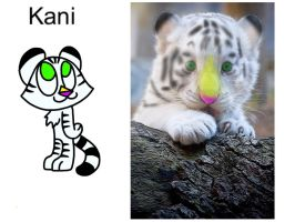Kani in Real life by AhO4464