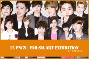 [PNG] EXO SMART Exhibition render by sarielk