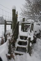 snowy steps to another world by loobyloukitty