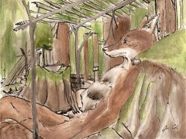 Coyote Under Shelter by Zethelius