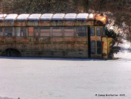 This Old Bus by jim88bro