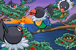 Lots of Chatot by Sharulia