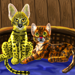 Savannah and Bengal by Disneyfairy