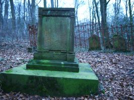 Graveyard in the forest 8 by Dragoroth-stock