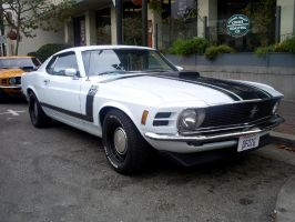 70 Mustang Boss 302 Monterey by Partywave