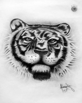 eye of tiger by andresmarin86