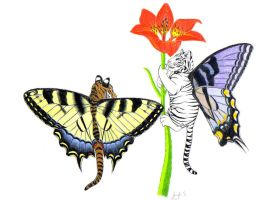 Punny Animal-Tiger Swallowtail by TrulyCat