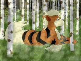 Arkanine in a Birch Forest by Blue-Dragon22