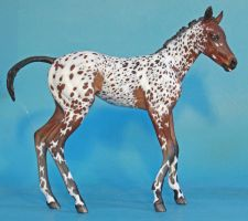 Monster Foal Camilla to baby bay appaloosa by arcadian7