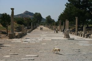 ruins of efes by snaplilly