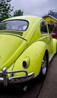 Green Yellow Herby by mcklingseisen
