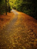 AUTUMN WAY by AdrianaKH-75