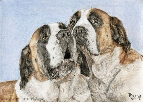 Dogs-brothers by Azany