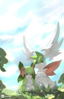 Sky and Land -Shaymin-