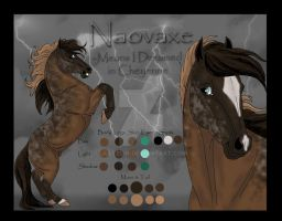 Naovaxe's Reference Sheet by Jullelin