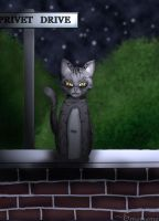McGonagall Waits by emememe
