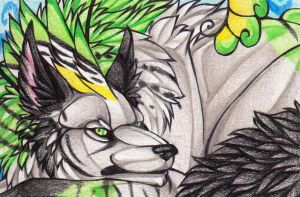 .:Veira:. ACEO by sapphire-shadows