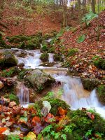 Autumn Stream III by Elmik5