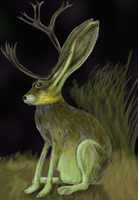 jackalope by colourblinding