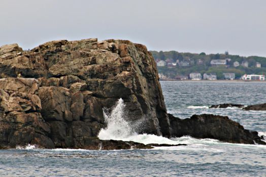 Nahant, MA Rock by applerust