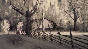 Experiments with Infrared by paw7904