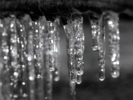 Getting Your Icicles in a Row by Chiseled-Marble