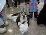 my new quadsuit! WOLF LINK by samajula