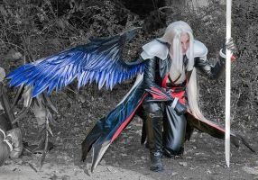 Sephiroth Kingdom Hearts Cos by Xx-lil-xX