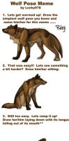 Wolf Meme by earthsea-23