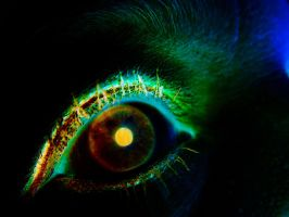 Eye Exp5 by todds201