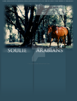 soulie layout entry by FallenShandeh