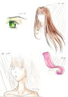 Colorpencil tips 2 by Gwendolyn12