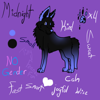Midnight by Wafflezlol