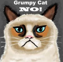 Grumpy Cat sketch by mayuyu0405
