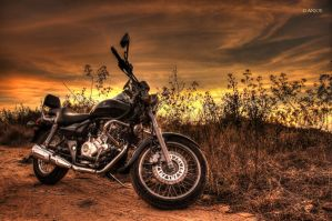 Bajaj Avenger at Sunset by anjoeaj