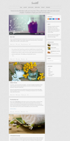 Socialike Responsive WordPress Blog Social Pages by DarkStaLkeRR