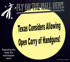 Texas Considers Allowing Open Carry of Handguns! by IAmTheUnison
