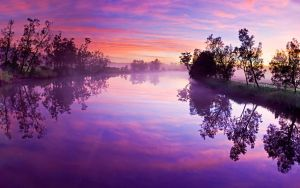 Purple-Wallpaper-35 by rhuanny-pereira