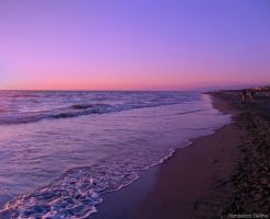Sunset on the beach 13 by FrancescaDelfino