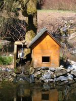 Little Pond Cabin 01 by Lengels-Stock
